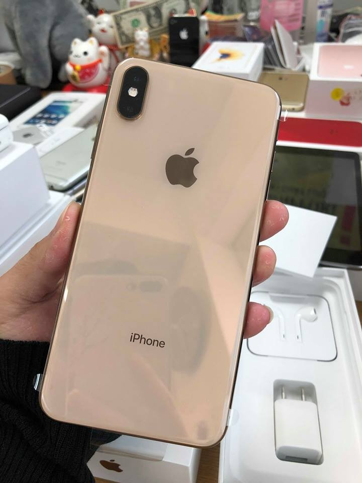 iPhone Xs Max - 256GB (1 SIM) - LL/A (Ảnh 3)