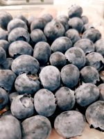 Việt quất Nam Phi Blueberries ozblu - Smile Fruit