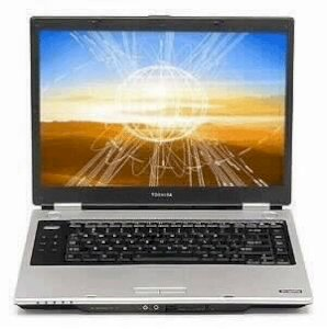 Toshiba Tecra A8-1224E (Intel Core 2 Duo T5500 1.66GHz, 512MB RAM, 120GB HDD, VGA Intel GMA 950, 15.4 inch, Windows Vista Business)