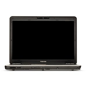 Toshiba Satellite Pro M300-S1002V (Intel Core 2 Duo T8300 2,4ghz, 2GB RAM, 160GB HDD, VGA Intel GMA X3100, 14.1 inch, Windows Vista Business)