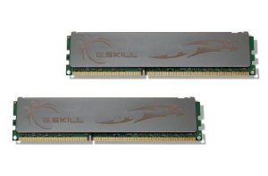 Gskill ECO F3-12800CL8D-4GBECO DDR3 4GB (2GBx2) Bus 1600MHz PC3-12800