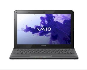 Sony Vaio SVE-11135CX/B (AMD E2-Series E2-2000 1.75GHz, 4GB RAM, 750GB HDD, VGA ATI Radeon HD 7340, 11.6 inch, Windows 8 64 bit)