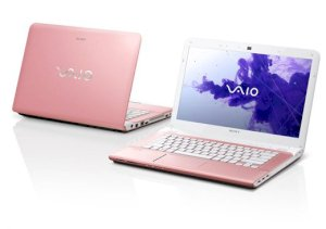Sony Vaio SVE-14132CX/P (Intel Core i3-3120M 2.5GHz, 4GB RAM, 500GB HDD, VGA Intel HD Graphics 4000, 14 inch, Windows 8 64 bit)