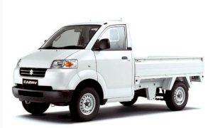 Suzuki Super Carry Pro S