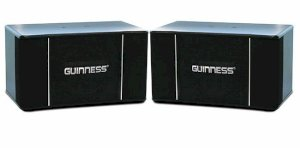 Loa Guinness 103 Series VIII (3-way, 360W)