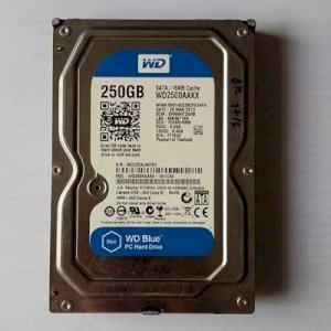 Ổ cứng PC WD 250G SATA/16MB (blue)