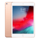 IPAD MINI 5 2019 WIFI+4G 256GB