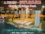 Apartment For Rent In Saigon Pearl, Ruby 1, Unit 03, 205 Sq.m