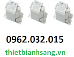 Chấn Lưu Philips Hid Bhl 1000L 300 Its 9137101095 Made In Holand