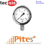 "Đồng Hồ Tecsis|Tecsis- 100Mm Industrial Pressure Gauge Model P1778, 3/8""bspt Bottom