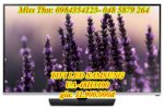 Tivi Led Samsung Ua -48H5100 48 Inches Full Hd Cmr 100Hz