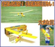 Dragon Slow flyer-Wing