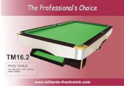 Bida Lỗ (Pool Table) TM16.2