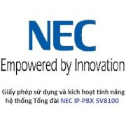 NEC LK-SYS-IP-TRUNK1-LIC IP Trunk (SIP / H.323) License (per channel)
