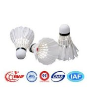 Double Fish Jinque 12 PCS White Natural Feather Badminton Shuttlecock for International Tournament