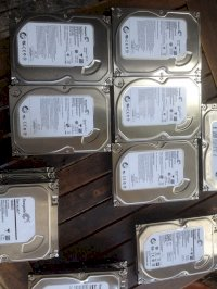 Hdd 500Gb, Hdd Pc 500Gb, Hdd Pc Gia Re, Hdd 500Gb Sg, Hdd 500Gb Gia Re, Hdd New