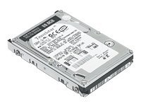 IBM ThinkPad 100GB - 5400rpm - ATA - (40Y8716)