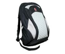 TravelPAC Laptop Backpack  PAC 300A