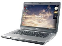 Toshiba Satellite L310-S402 (Intel Core 2 Duo T5800 2.0Ghz, 2GB RAM, 160GB HDD, VGA Intel GMA X4500M HD, 14.1 inch, PC DOS)