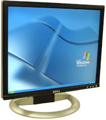 DELL 1905FP 19inch
