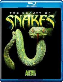 The Beauty of Snakes (2008)