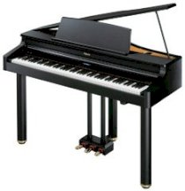 Roland Digital Piano RG-1F