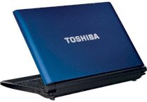 Toshiba NB550D (PLL5FL-00J01P) (AMD Dual-Core C-50 1.0GHz, 1GB RAM, 250GB HDD, VGA ATI Radeon HD 6250, 10.1 inch, Windows 7 Starter)