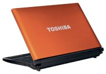 Toshiba NB550D (PLL5FL-00K01P) (AMD Dual-Core C-50 1.0GHz, 1GB RAM, 250GB HDD, VGA ATI Radeon HD 6250, 10.1 inch, Windows 7 Starter)