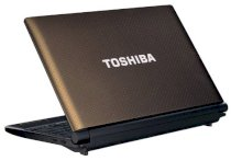 Toshiba NB550D (PLL5FL-00H01P) (AMD Dual-Core C-50 1.0GHz, 1GB RAM, 250GB HDD, VGA ATI Radeon HD 6250, 10.1 inch, Windows 7 Starter)