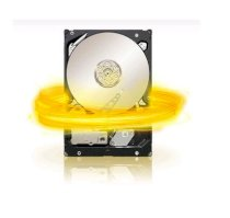 Seagate Barracuda XT 2TB - 7200rpm - 64MB cache - SATA 6Gb/s (ST32000641AS )