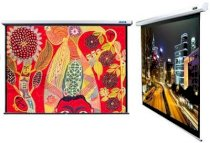 Manual Wall Screen DMS240 135 inches