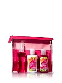 Japanese travel set (3 chai 88ml)