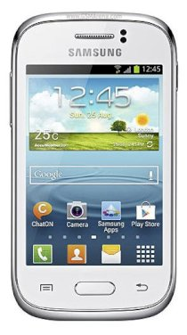 Samsung Galaxy Young S6310 (GT-S6310)