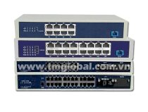 TM GLOBAL - Thiết bị Triple Play EPON ONU Multi-user Series