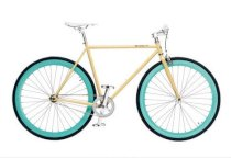 Pure Fix Fixies The X-Ray