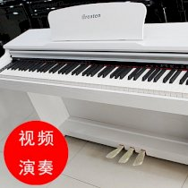 Great Digital Piano DK300