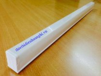 Đèn led tube Philips Essential 31082