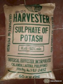 Potassium Sulphate (K2SO4) Philippines