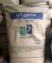 L- LYSINE 98,5% Dongxiao