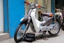 Super Cub 50cc New 2019