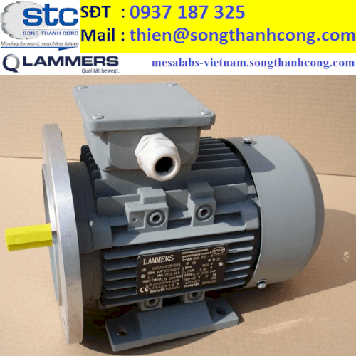 15AA-100L1-4-dong-co-dien-3-pha-lammers-viet-nam-song-thanh-cong-dai-dien-three-phase-electric-motor